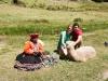 Samen met een Lama