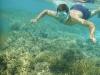 Sebastiaan snorkelen in het Reef bij Moorea